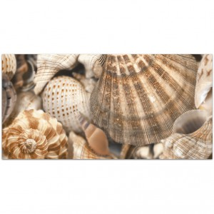 Sea Breeze Shells №3 декор 300х600
